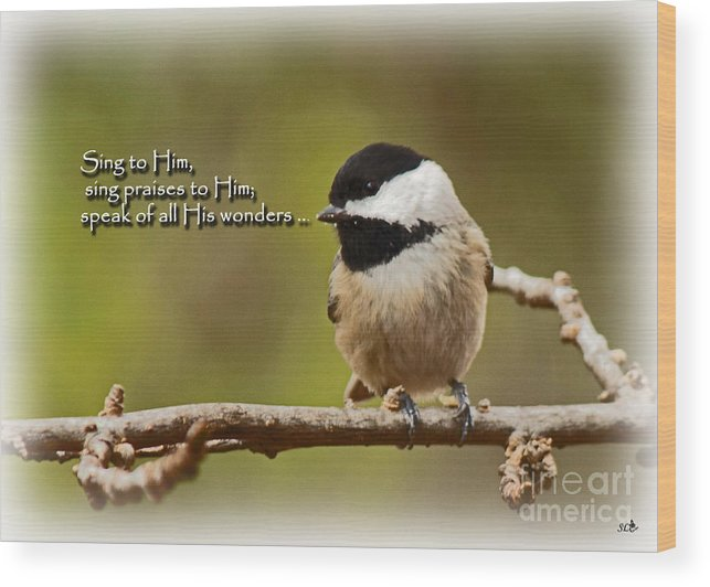 Chickadee Wood Print featuring the photograph Sing To Him by Sandra Clark