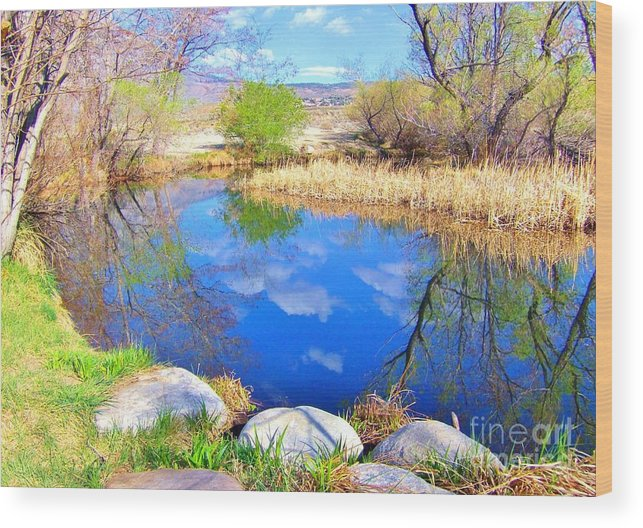 Sky Wood Print featuring the photograph Spring At The Pond by Marilyn Diaz