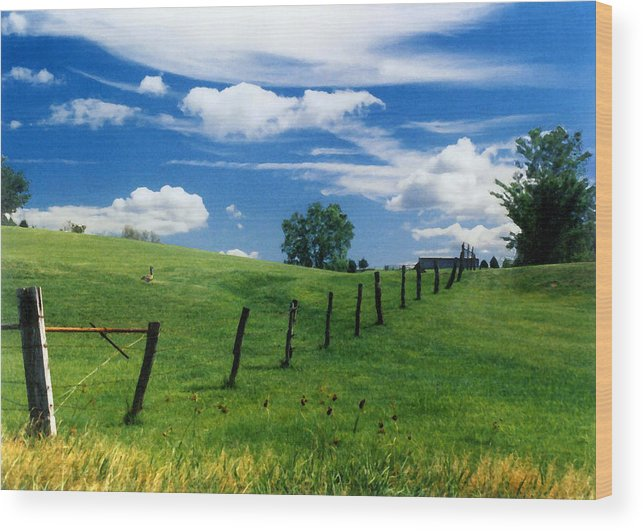Summer Landscape Wood Print featuring the photograph Summer Landscape by Steve Karol