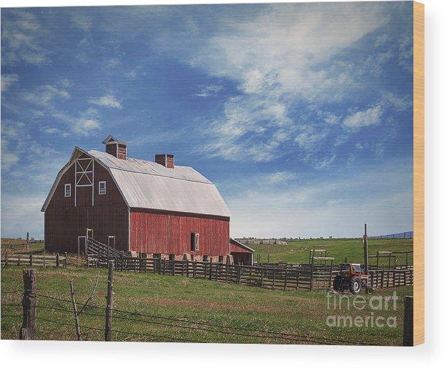 Colorado Wood Print featuring the photograph Summer Mancos Barn by Janice Pariza