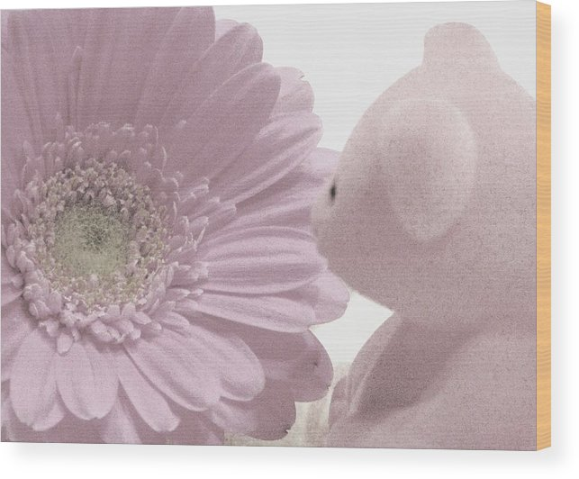 Teddy Bears Wood Print featuring the photograph Tenderly by Angela Davies