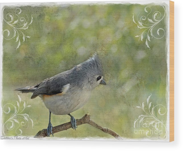 Nature Wood Print featuring the photograph Tufted Titmouse With Decorations II by Debbie Portwood