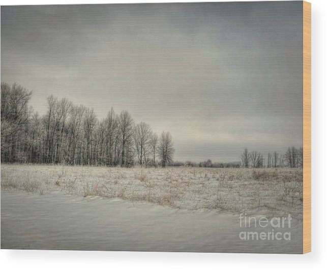 Winter Wood Print featuring the photograph Winter Morning by Pamela Baker