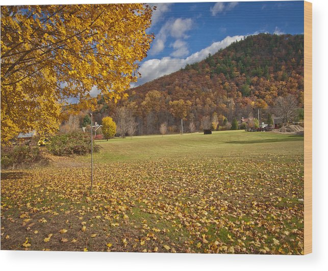 Nature Wood Print featuring the photograph Autumn Foliage Scenery On Mohawk Trail by Jiayin Ma