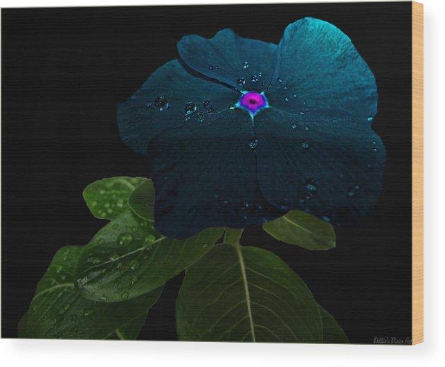 Nature Wood Print featuring the digital art Blue Jean Impatient by Debbie Portwood