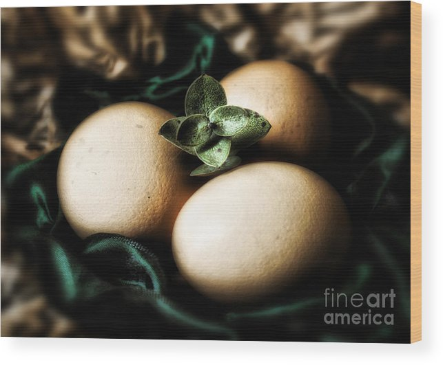 Classy Easter Eggs Wood Print featuring the photograph Classy Easter by Danuta Bennett