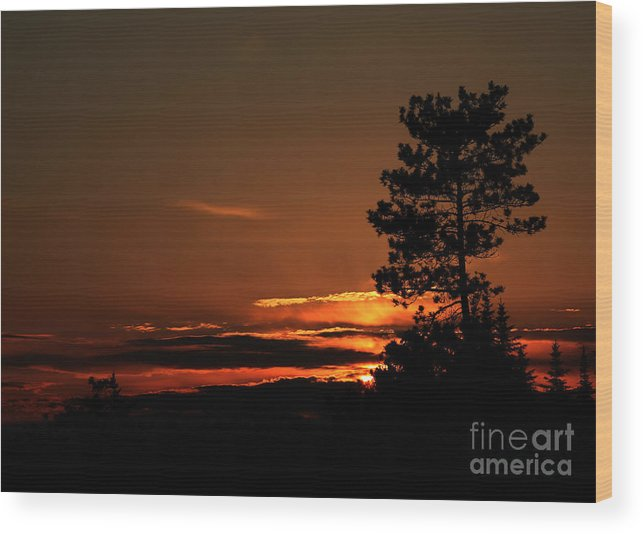 Sunset Wood Print featuring the photograph Onaping Canada Sunset 2 by Marjorie Imbeau