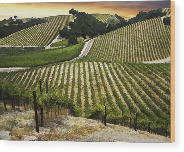 Landscape Wood Print featuring the digital art Red Soles Vineyard by Sharon Foster