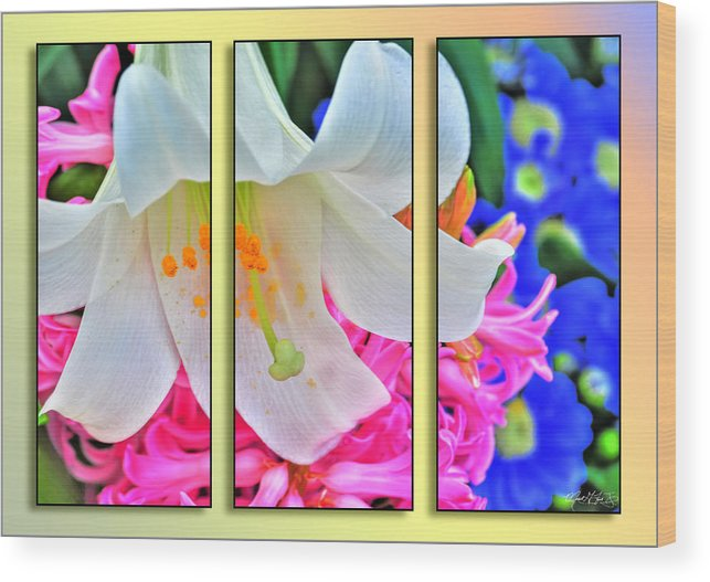 Wood Print featuring the photograph Spring Again Triptych Series by Michael Frank Jr