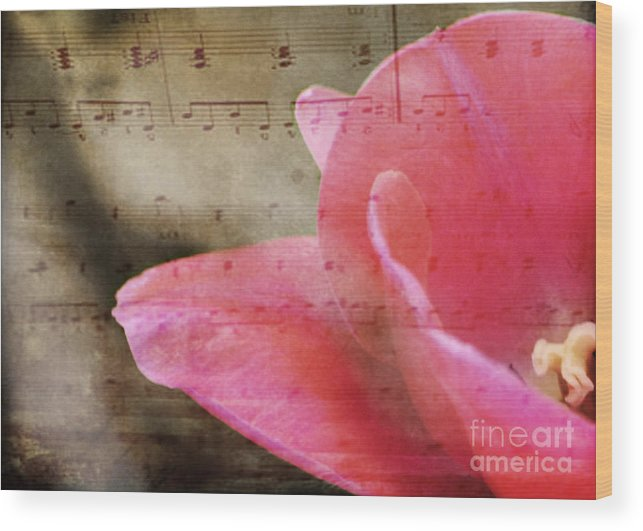 Music Wood Print featuring the photograph Spring Sings by Traci Cottingham