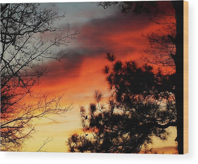 Sunset Wood Print featuring the photograph Sunset On Mountain Road by Nancy Hunt