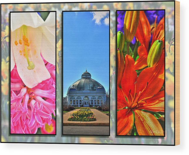 Wood Print featuring the photograph The Buffalo And Erie County Botanical Gardens Triptych Series by Michael Frank Jr