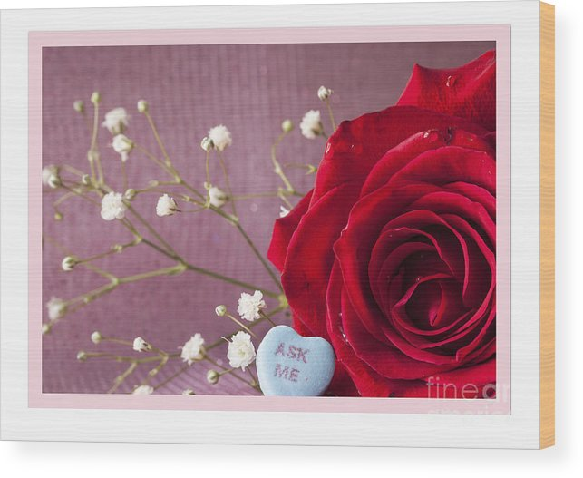 Flowers Wood Print featuring the photograph A Rose For Valentine's Day - 2 by Donna Crider