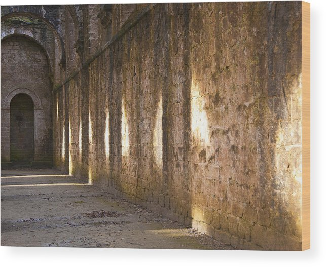 Castle Wood Print featuring the photograph Light And Shadows by Svetlana Sewell