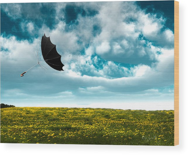 Umbrella Wood Print featuring the photograph A Little Windy by Bob Orsillo