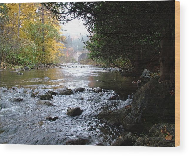 Water Wood Print featuring the photograph A River Runs Through It by Cabral Stock