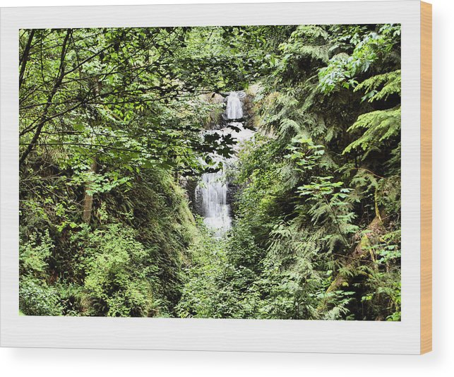 Waterfall Wood Print featuring the photograph A Secret Place by J D Banks