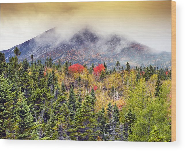 Baxter State Park Wood Print featuring the photograph Autumn In Baxter State Park Maine by Brendan Reals