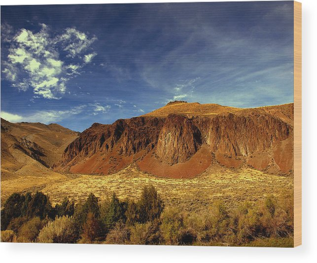 Mountains Wood Print featuring the photograph Big Sky 2 by Irma BACKELANT GALLERIES