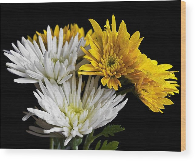 Flowers Wood Print featuring the photograph Bouquet by Svetlana Sewell