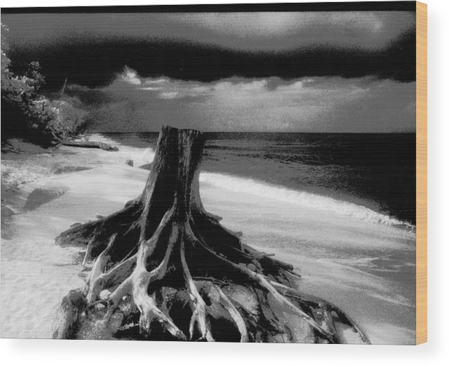 Captiva Florida Wood Print featuring the photograph Captiva Storm by Michael L Kimble