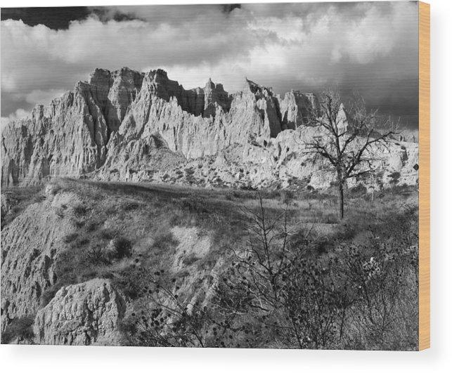 Cedar Wood Print featuring the photograph Cedar Pass by Nicholas Blackwell