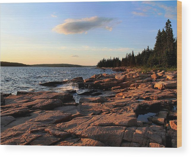 Travel Wood Print featuring the photograph Evening Light by Scott Bricker