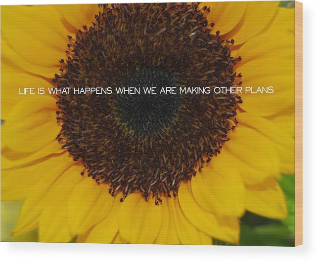Sun Wood Print featuring the photograph Fiery Bloom Quote by JAMART Photography