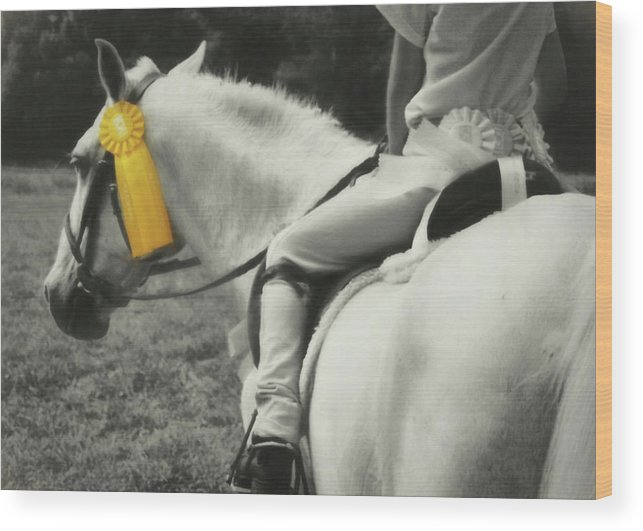 Horse Wood Print featuring the photograph First Show Yellow by JAMART Photography