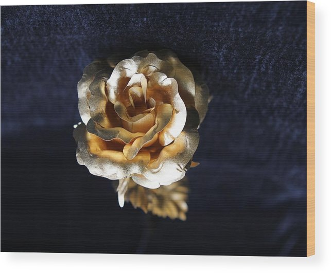 Golden Rose Wood Print featuring the photograph Golden Rose by Sladjana Lazarevic