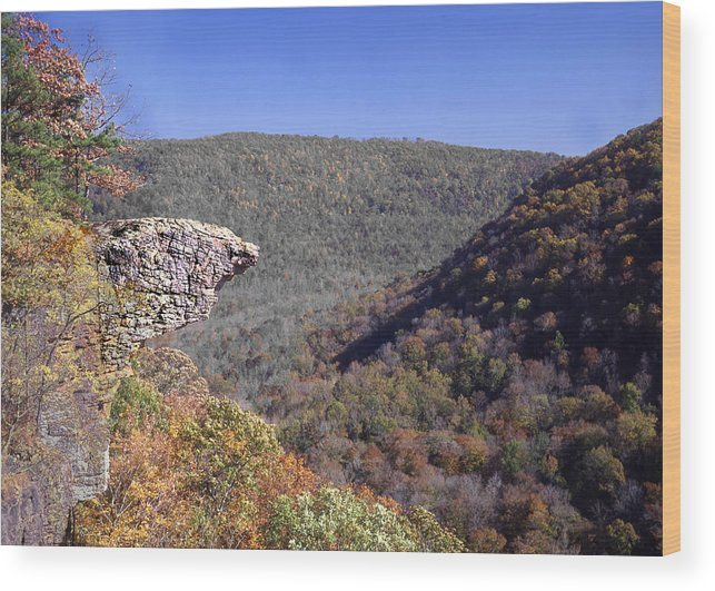 Hawksbill Crag Wood Print featuring the photograph Hawksbill Crag by Curtis J Neeley Jr