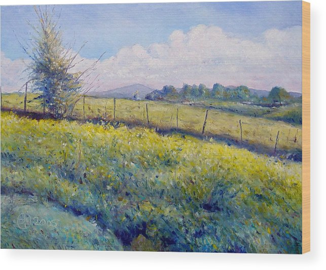 Italy Painting Wood Print featuring the painting Hills Around Gavignano Italy 2005 by Enver Larney
