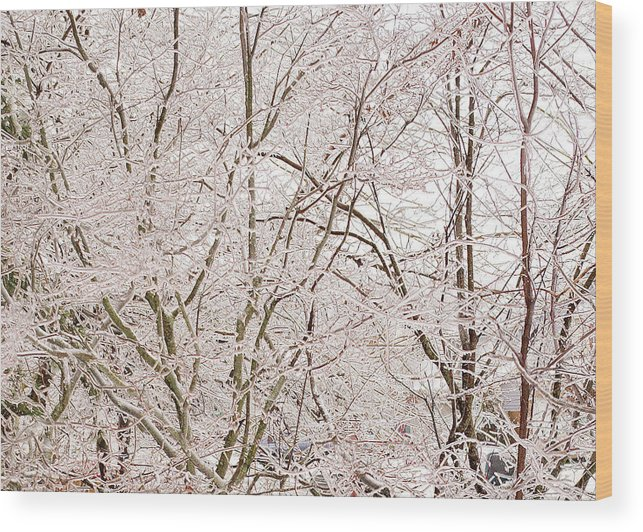 Winter Wood Print featuring the photograph Ice by Steve Kenney