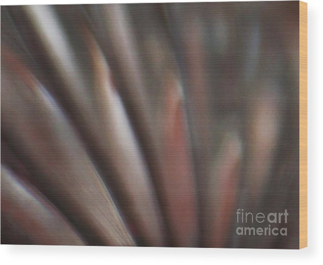 Crystal Wood Print featuring the photograph Internal Reflection by Linda Shafer