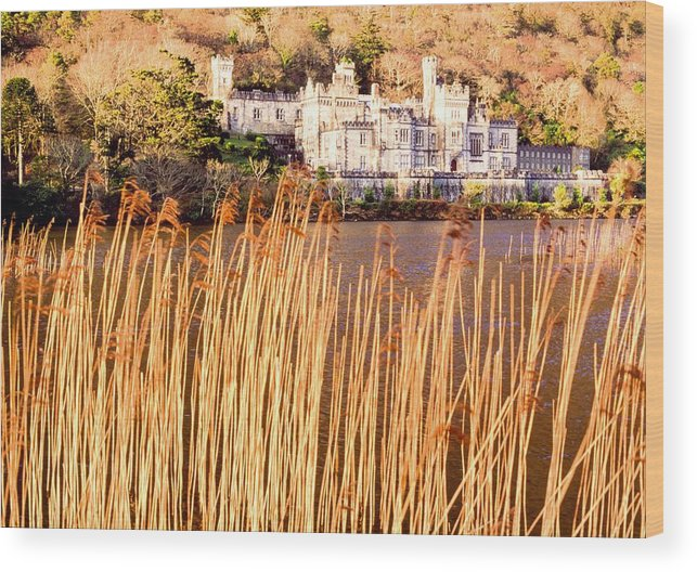 Outdoors Wood Print featuring the photograph Kylemore Abbey, County Galway by Sici