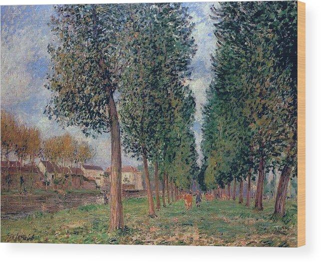 Lane Of Poplars At Moret Wood Print featuring the painting Lane Of Poplars At Moret by MotionAge Designs