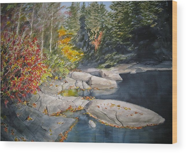 Landscape Wood Print featuring the painting On The Rocks by Shirley Braithwaite Hunt