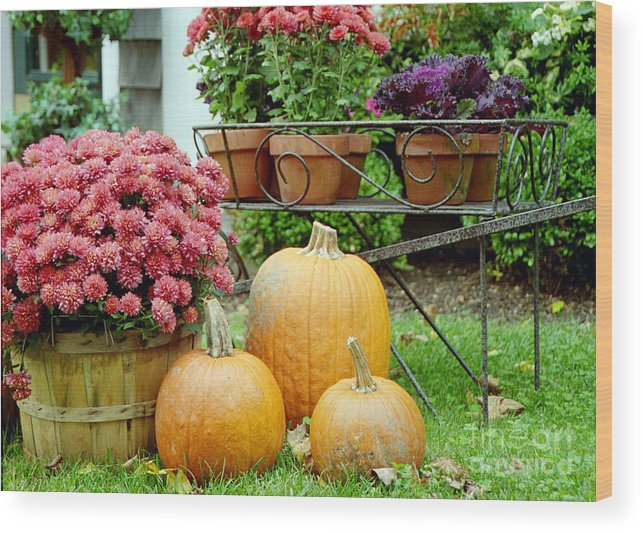 Linda Drown Wood Print featuring the photograph Pumpkins And Flowers by Linda Drown