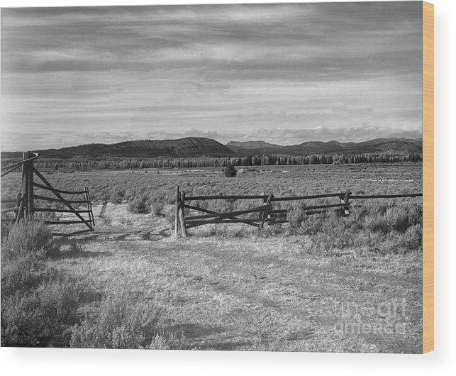 Christian Slanec Wood Print featuring the photograph Ranch Road by Christian Slanec