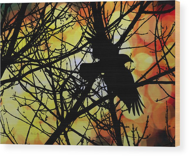 Raven Wood Print featuring the photograph Raven by Bob Orsillo