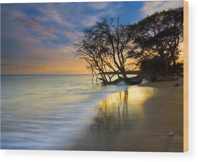 Waves Wood Print featuring the photograph Reflections Of Paradise by Mike Dawson