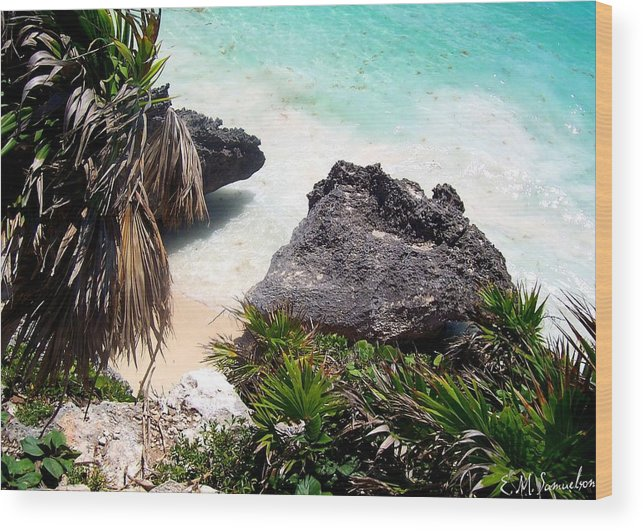 Landscape Wood Print featuring the photograph Shore Of Mexico by Elise Samuelson