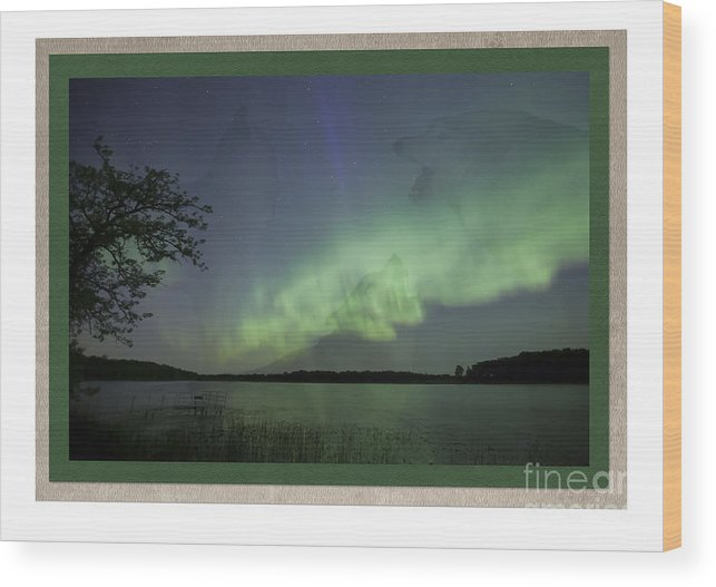 Minnesota Wood Print featuring the photograph Spirit Wolf Collection - 1 by Donna Crider