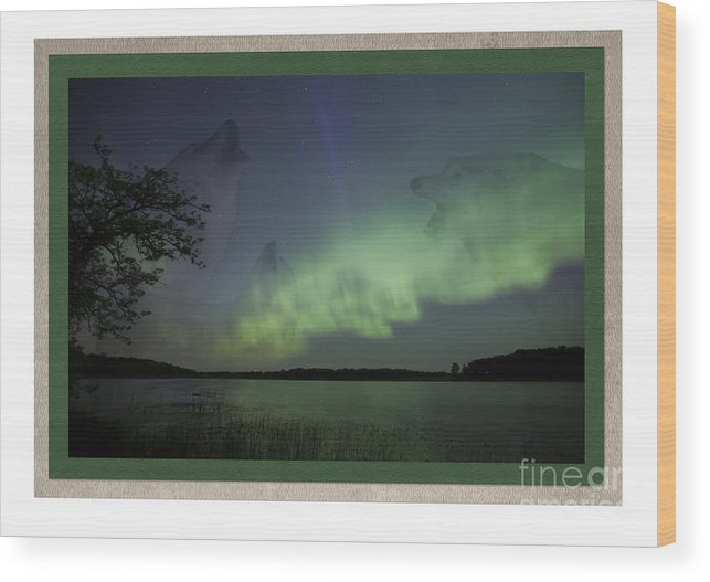 Minnesota Wood Print featuring the photograph Spirit Wolf Collection - 2 by Donna Crider