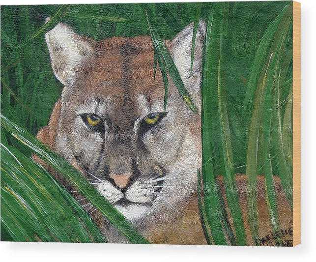 Panther Wood Print featuring the painting Watching Florida Panther by Darlene Green