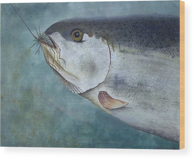 Fish Wood Print featuring the painting What's For Dinner by Scott Plaster