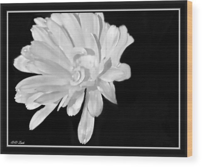 Flower Wood Print featuring the mixed media White And Black Flower Painting by Debra Lynch