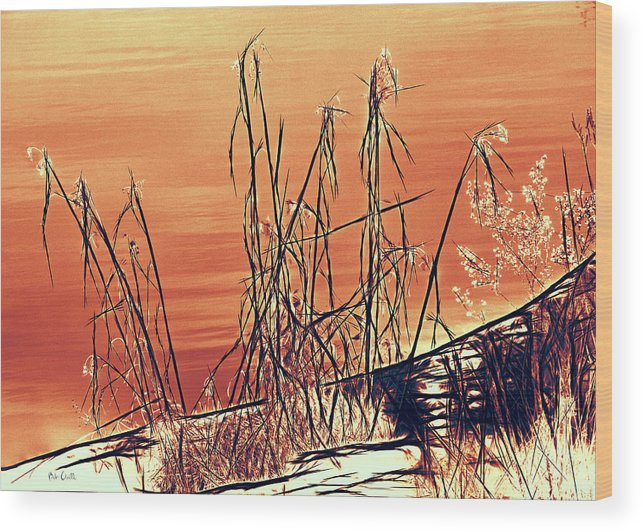 Abstract Wood Print featuring the photograph Winter Orange by Bob Orsillo