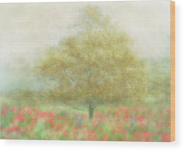 Summer Wood Print featuring the photograph A Dream Of Summer by Katarina Holmstr�m