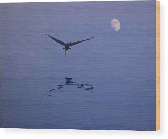 Nature Wood Print featuring the photograph Fly To The Moon by Eric Workman
